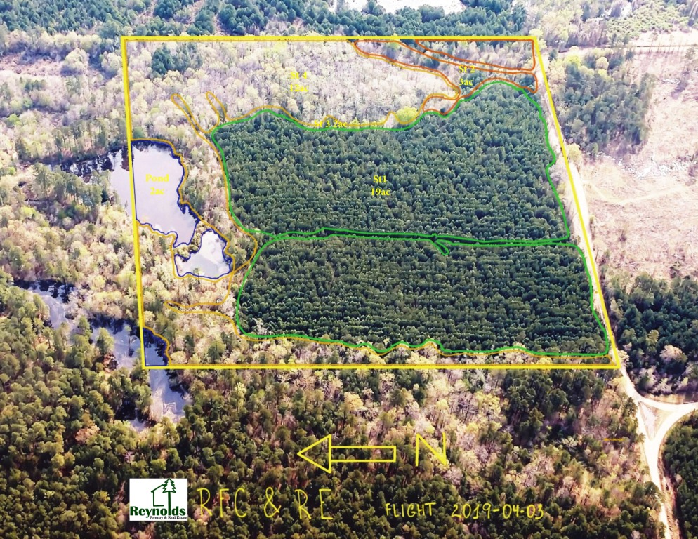 Reynolds Forestry Consulting - Quality Timber Management in